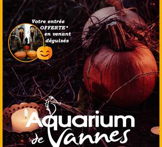 Cet automne à l'Aquarium, des animations tous les jours !